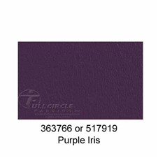 517919PurpleIris1
