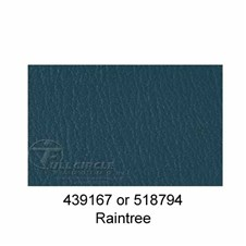 518794RainTree1