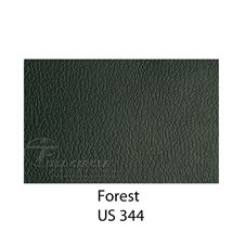 US344Forest1